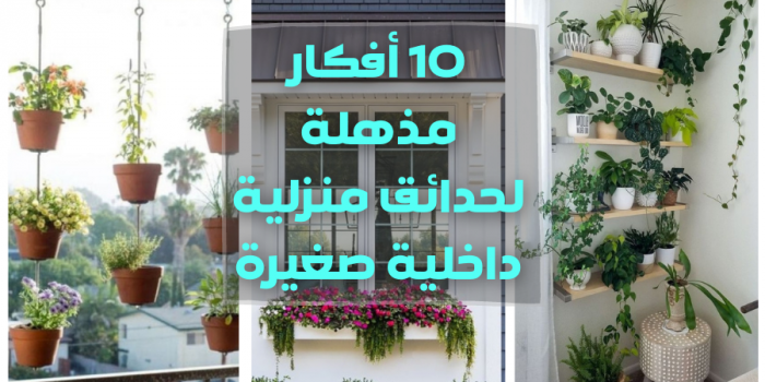 10 أفكار مذهلة لحدائق منزلية داخلية صغيرة